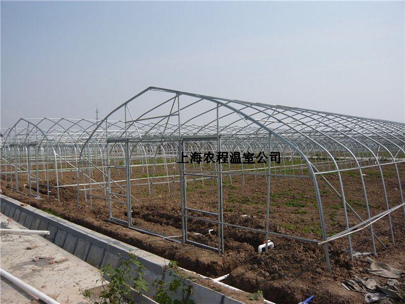 顶高3米;大棚框架结构主要由拱杆